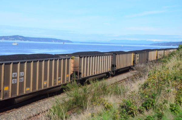 Coal and oil train traffic have become increasingly problematic in the Edmonds community for an array of reasons including spreading coal dust and particulate matter, cutting off access to waterfront parks and businesses, the ferry terminal, the senior center, and increased erosion and degradation of waterfront land.