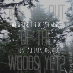Taylor Swift 1989 Lyrics - Out of the Woods 3