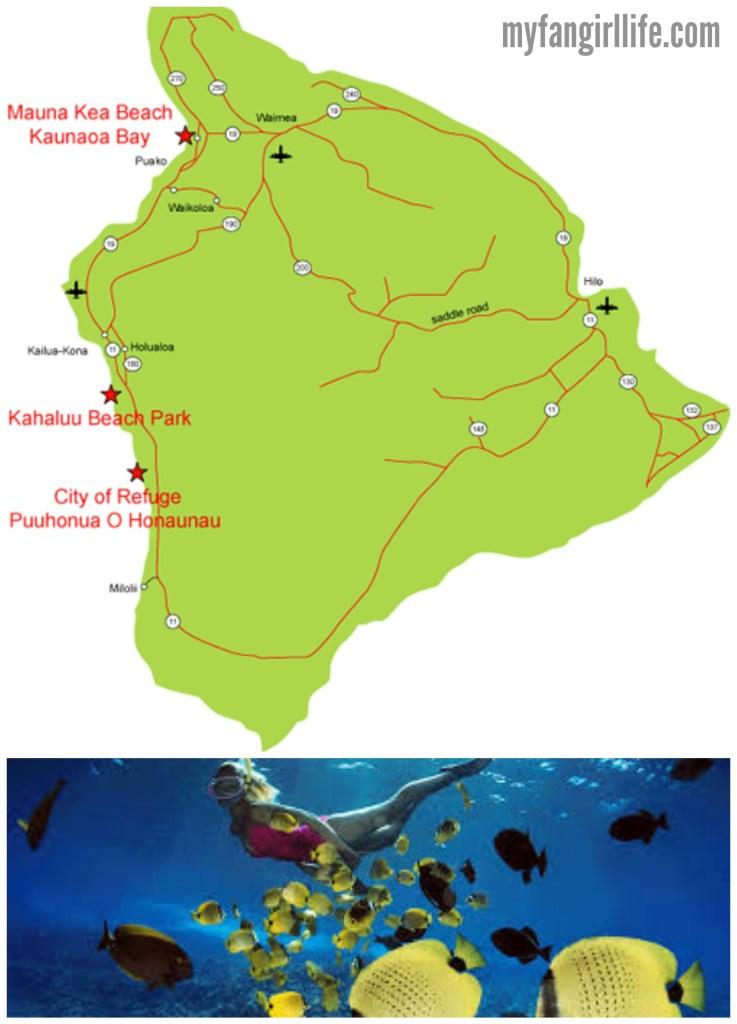 Big Island Snorkelling