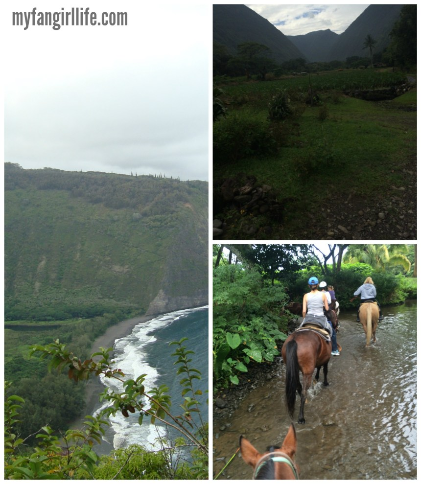 Waipio Horseback Riding
