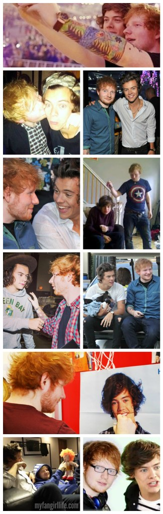 Harry and Ed Collage