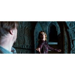 Small Crop Of Tonks And Lupin