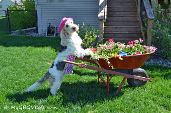 hauling flowers
