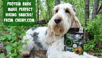 My GBGV Life healthy hiking snacks