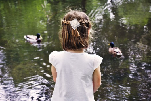 lily and the ducks