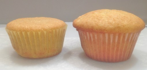 Nameste Perfect Flour Blend on the left and Authentic Foods GF Classic Blend on the right