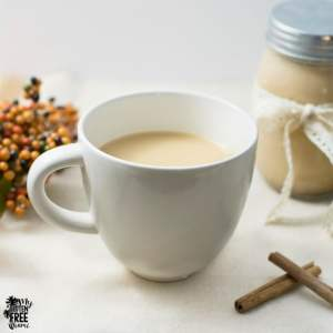 Homemade Pumpkin Spice Coffee Creamer | http://myglutenfreemiami.com