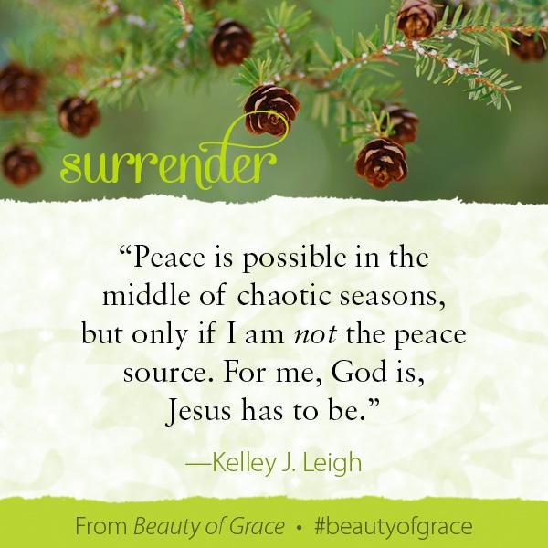Kelley J. Leigh The Beauty of Grace #beautyofgrace