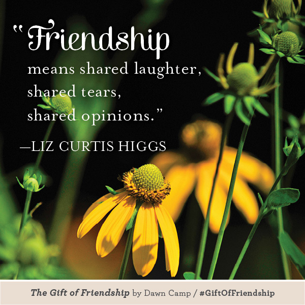 Liz Curtis Higgs The Gift of Friendship #GiftofFriendship