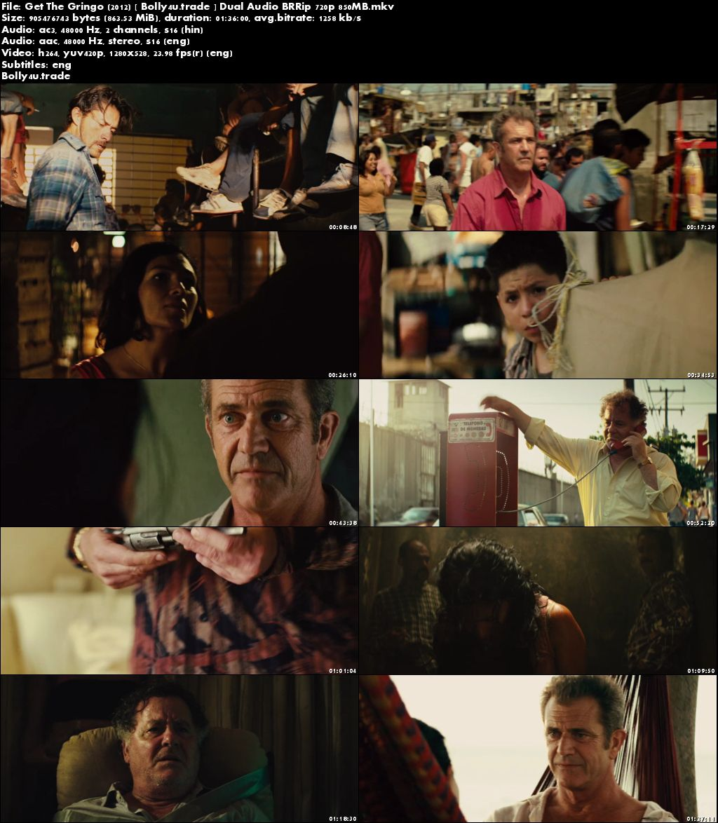 Get The Gringo 2012 BRRip 300MB Hindi Dual Audio 480p Download