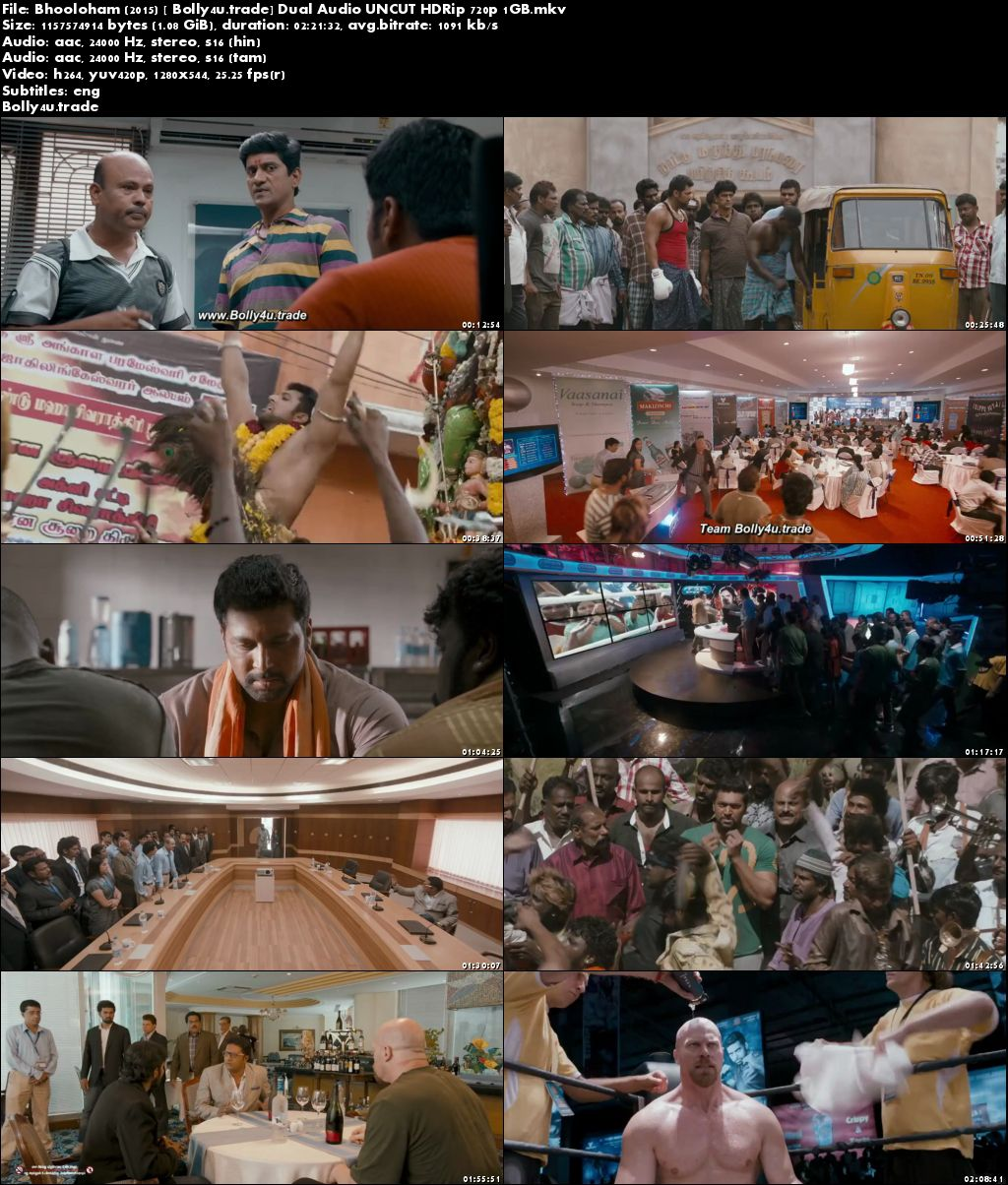 Bhooloham 2015 HDRip 450MB UNCUT Hindi Dual Audio 480p ESub Download