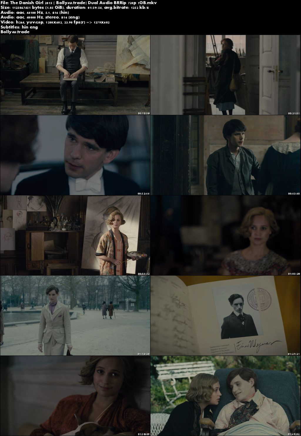 The Danish Girl 2015 BluRay 300Mb Hindi Dual Audio 480p Download