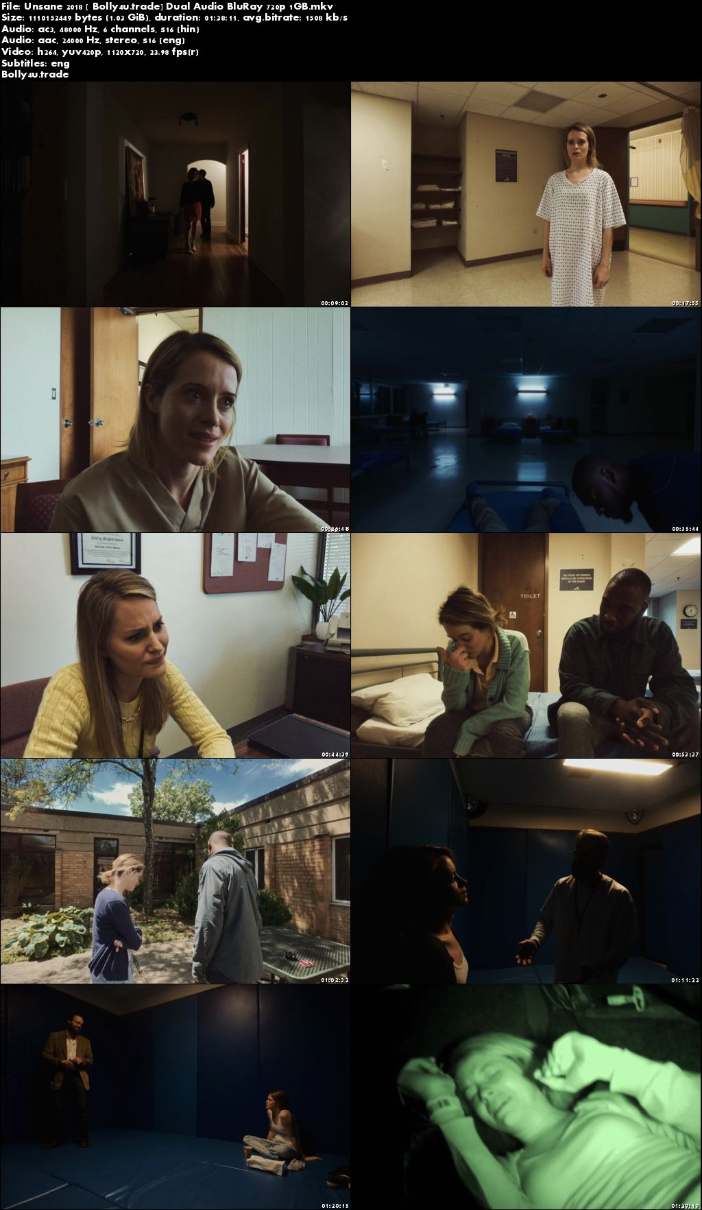 Unsane 2018 BluRay 300MB Hindi Dual Audio ORG 480p ESub