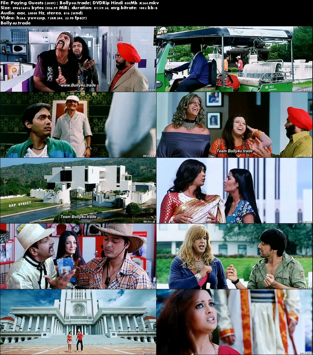 Paying Guests 2009 DTHRip 350Mb Full Hindi Movie Download 480p
