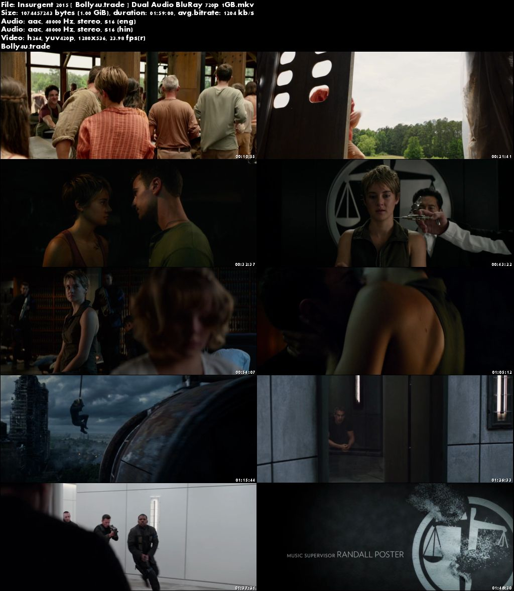 Insurgent 2015 BluRay 400MB Full Hindi Dual Audio Movie Download 480p Download