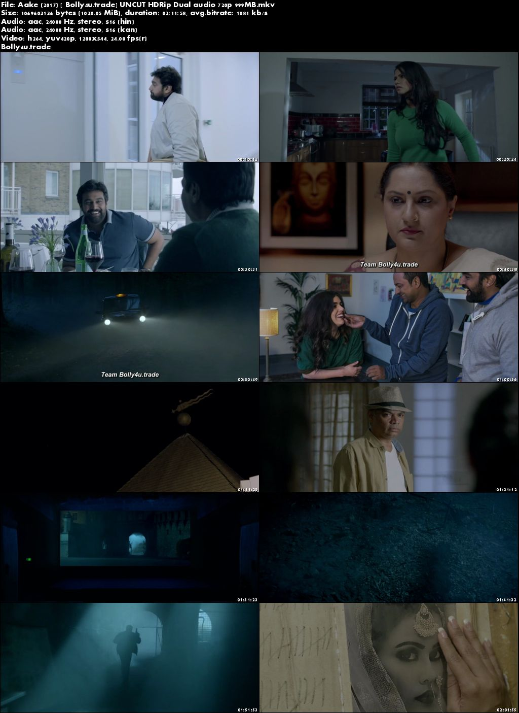 Aake 2017 HDRip 400MB UNCUT Hindi Dual Audio 480p Download