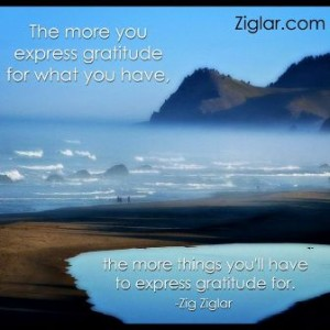 zig the more gratitude you have the more youll have to express gratitude for2