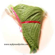 Sesame leaves bunch