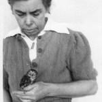 Meine Großmutter Erika Kux mit der Eule Ziezie