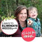 3 ways to eliminate weeds