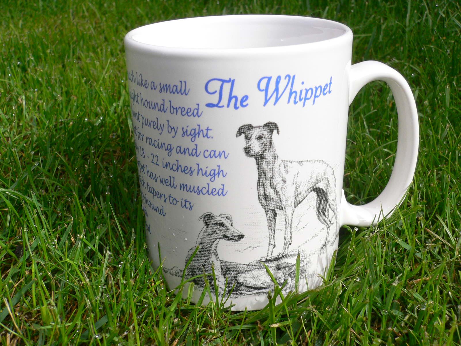 World of Whippet Paraphernalia | my little dog