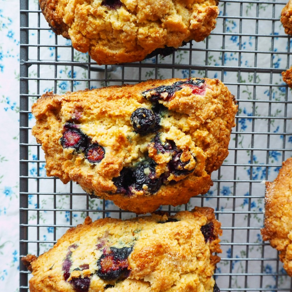 the best blueberry scones. ever
