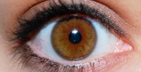 cropped-brown-eye-6793182