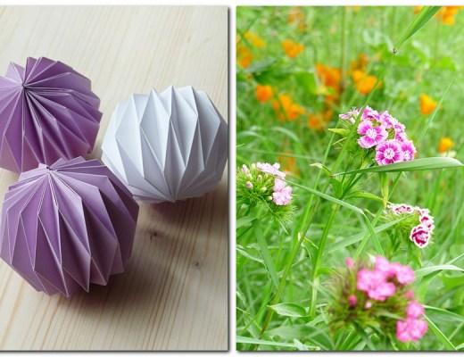 Anleitung für Origamibälle und Bartnelken auf der Blumenwiese