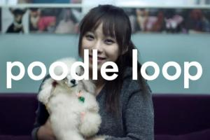 Video: Poodle Loop with the New Nokia Music Loop App (Must have app! So much fun – get from the Ovi Store today)