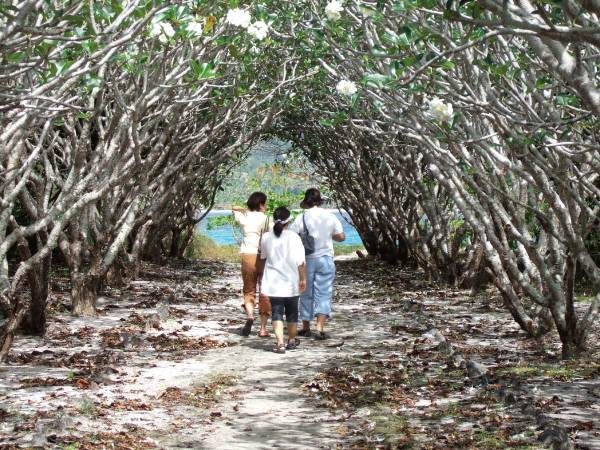 Walking back to the Beach, Nogas Island, Antique Province, Philippines