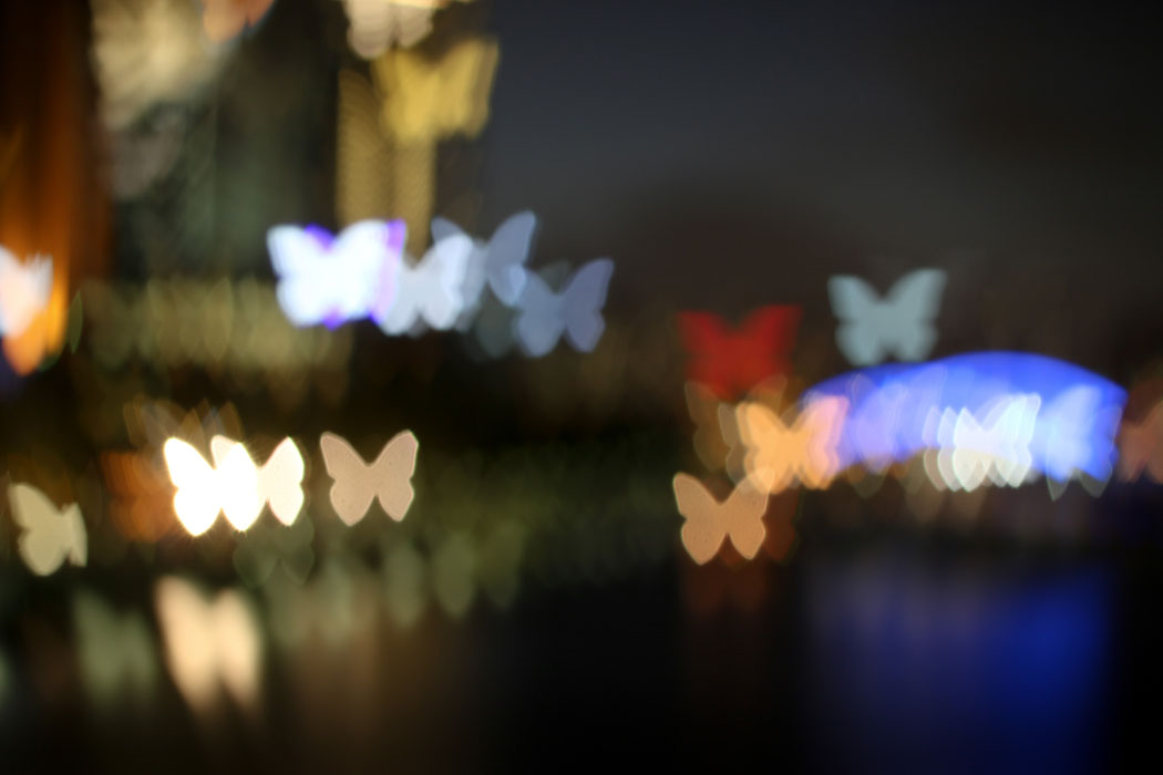 Out of Focus – Experimenting with Bokeh Photography in Melbourne