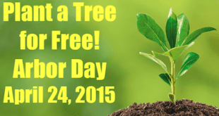 free-tree-arbor-day-feature