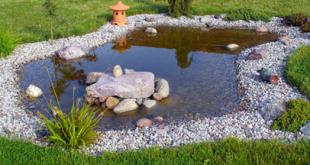 decorative-pond