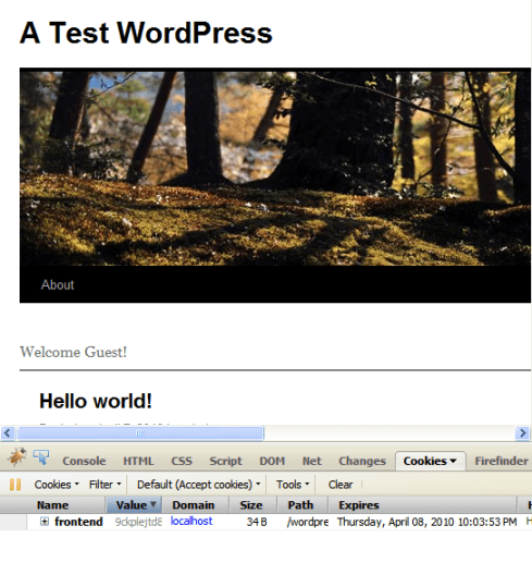 A Test WordPress homepage showing the default welcome message for Magento