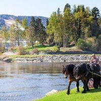 Klimatsmart gräsklippning i Sollefteå, årets första högsommardag