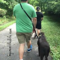 Walking a 5k for health and fitness with the family #TumEYummies #ad