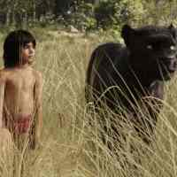 Behind the Scenes of the Jungle Book  #PetesDragonEvent #JungleBookBluRay