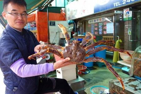 Händler mit Kingcrab, Jagalchi Fischmarkt Busan, Südkorea