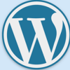 WordPressの投稿のdescriptionをサイト内に表示したい