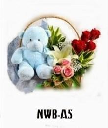 NWB04