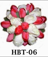 hbe-06