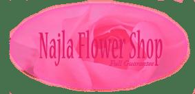 logo-najla2 copy