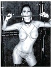 Ashley Dupre Nude Playboy (Photo)