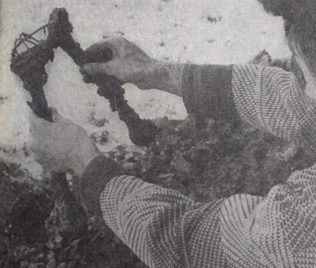 Foto: Roman Leljak. Košnica, prosinac 1989. U zemlji, samo 20 cm ispod njezine površine, kosti su još uvijek bile svezane. Fotografija iz knjige Huda jama, str. 113.