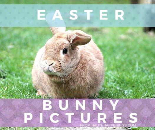 Terre Haute Easter Bunny Pictures