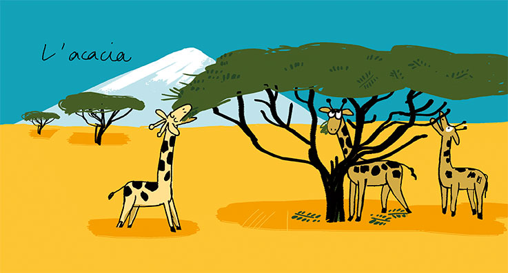 03.arbres_nathalie_desforges