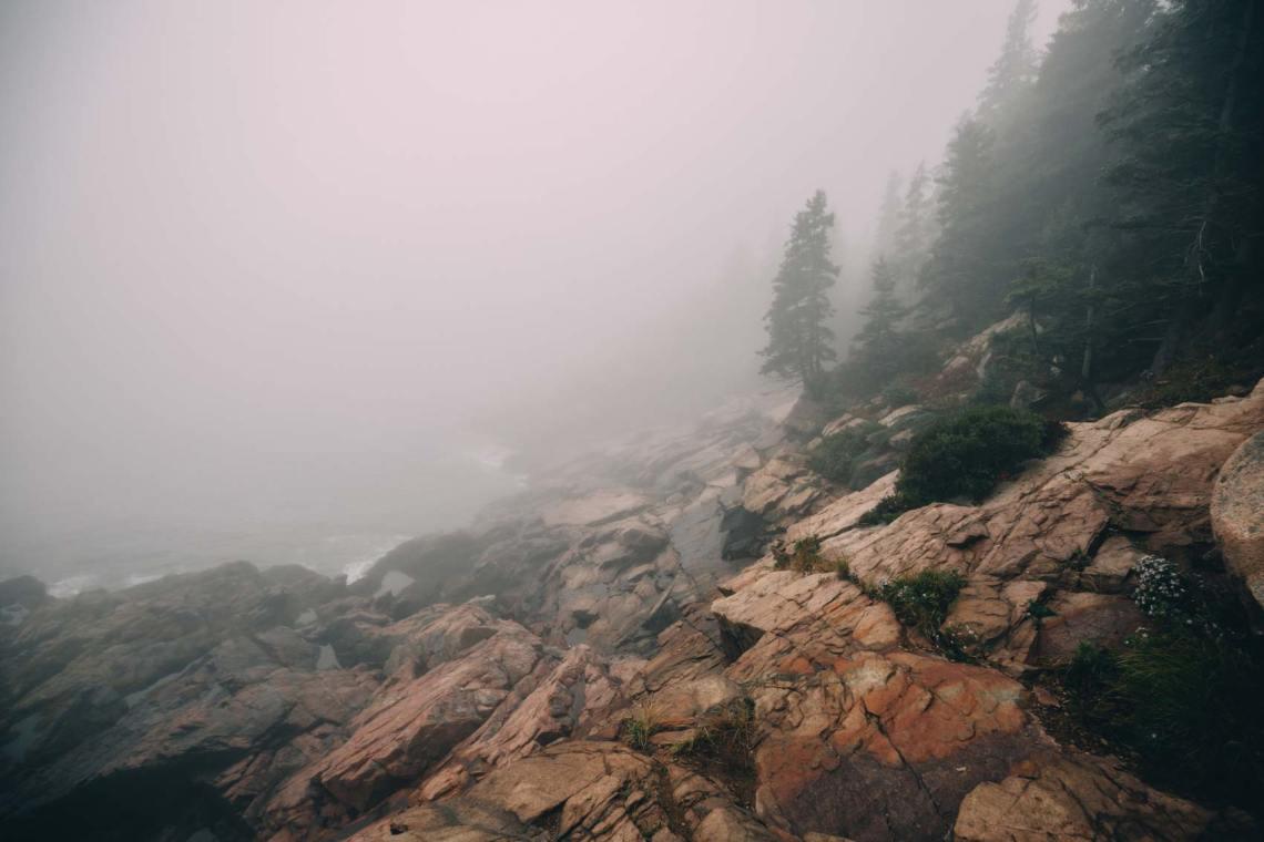 six_creepy_tales_national_park_quest_acadia_fog