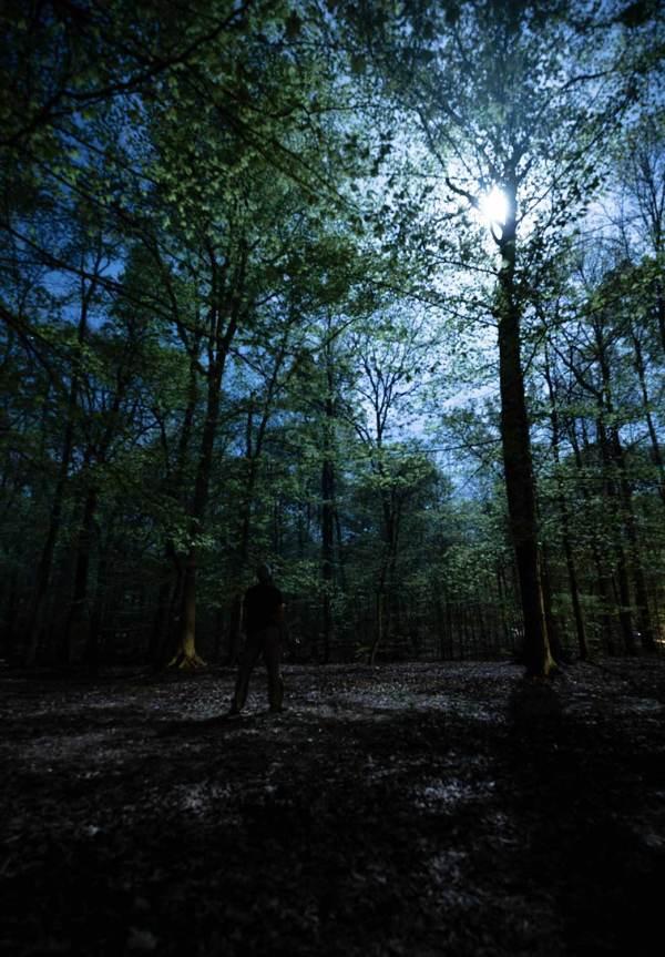 six_creepy_tales_national_park_quest_trees_moon