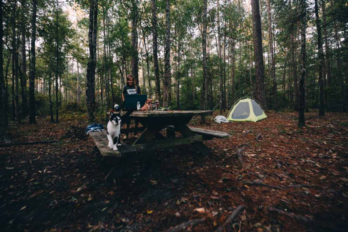 Our Congaree campsite in the trees, shared with the stray cat we named Congee. Her coloring - black and white - represents the unity we need.