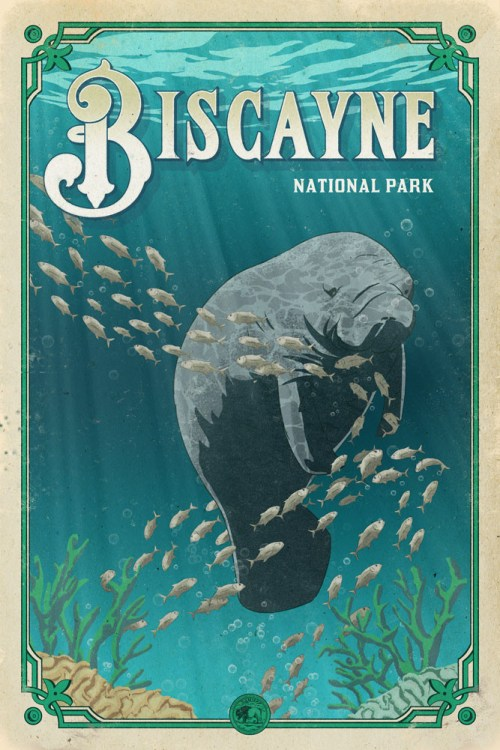 manatee_alligator_love_story_biscayne_poster